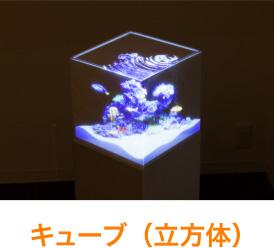 キューブ(立方体)
